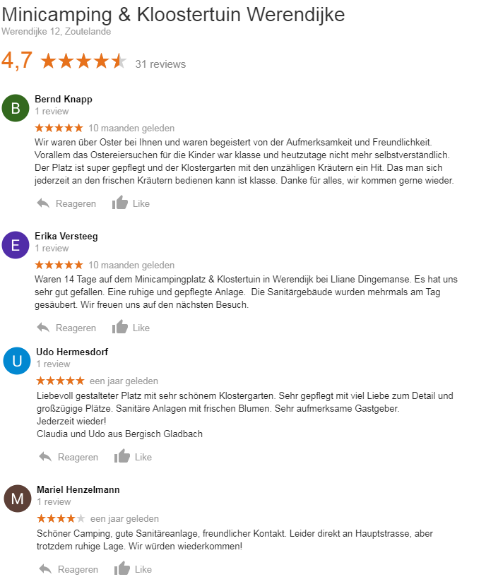 Google Reviews Werendijke